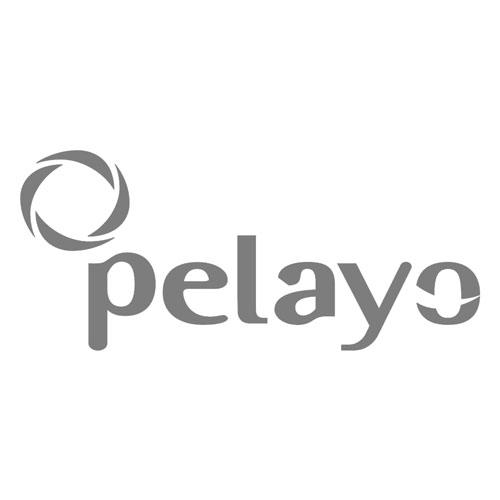 clientes-pelayo